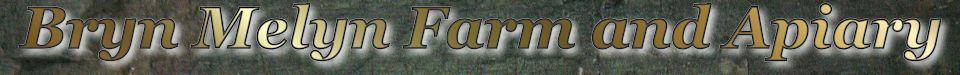 Bryn Melyn Farm Logo
